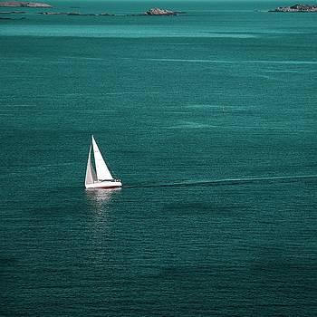 White Sailboat by Sonya Kanelstrand