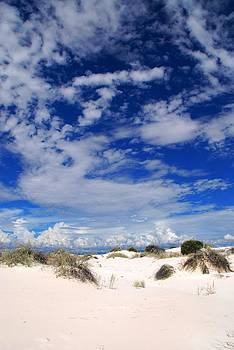 White Sands 1 by T C Brown