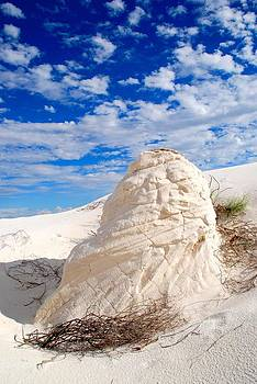 White Sands 10 by T C Brown