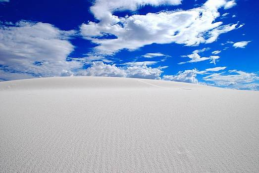 White Sands 8 by T C Brown