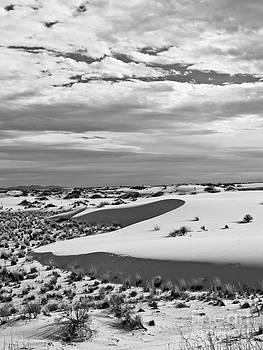 Craig Pearson - White Sands III