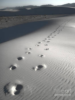 Gregory Dyer - White Sands New Mexico Footsteps