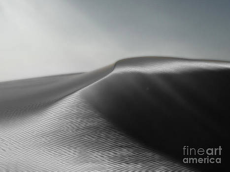 Gregory Dyer - White Sands New Mexico Silver Dune