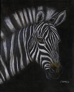 White Stripes by Sherryl Lapping