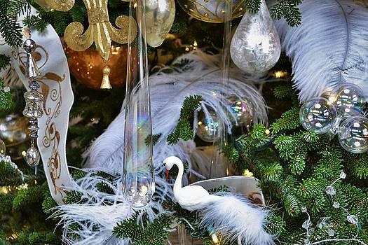 White Swan 1 by Wanda J King