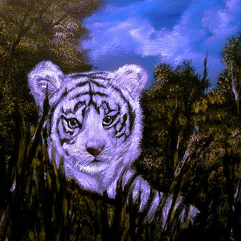 White Tiger Cub Sold by Cynthia Adams