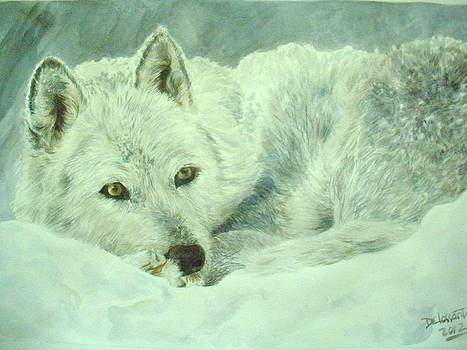 White Wolf In The Snow by Kristina Delossantos