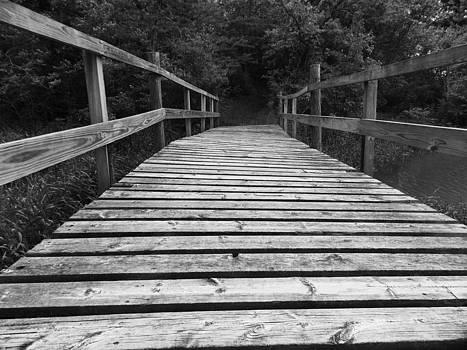 Whiteoak Bridge by Mark Kime