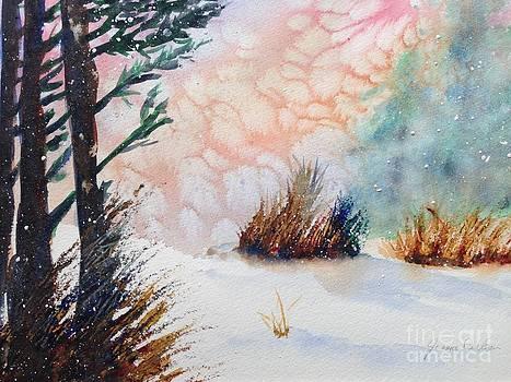 Whiteout by Joanne Killian