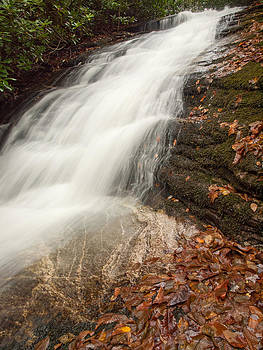 Whiteside Mountain Waterfall by Kelvin Taylor