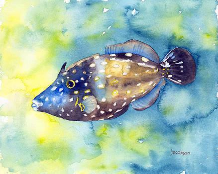 Whitespot Filefish by Pauline Jacobson