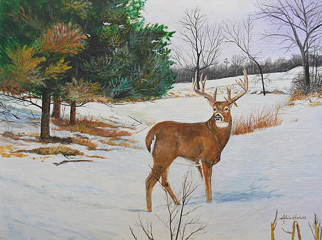 Whitetail-Droopy2 by Alvin Hepler