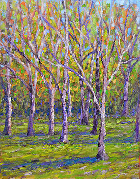 Whitnall Park Trees by Anthony Sell