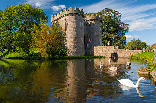 David Ross - Whittington Castle