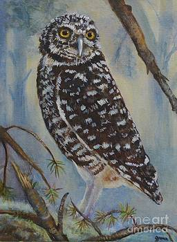 Whoo Cares by Jana Baker