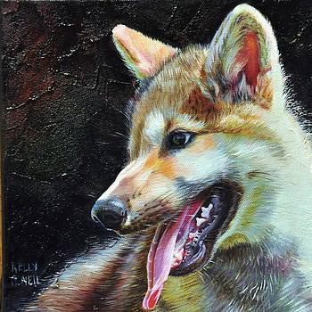 Whos Afraid of the Big Bad Wolf 1 by Kelly McNeil