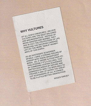 Why Vultures by Roger Swezey