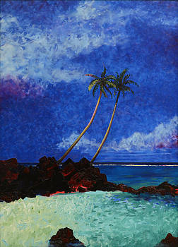 Wiamea Bay by Anguspaul Reynolds