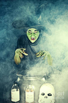Wicked Witch  by Sharon Dominick