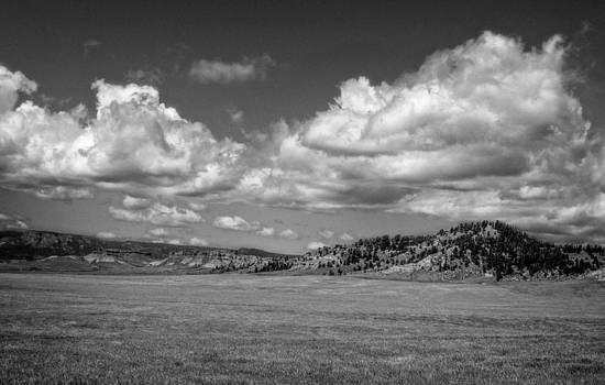 Ray Van Gundy - Wide Open Wyoming