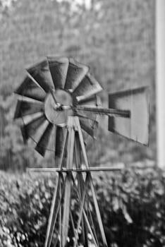 Wiindmill by Jon Cody