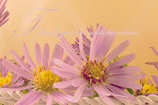 Sandra Foster - Wild Asters - Thank You For Your Kindness Card