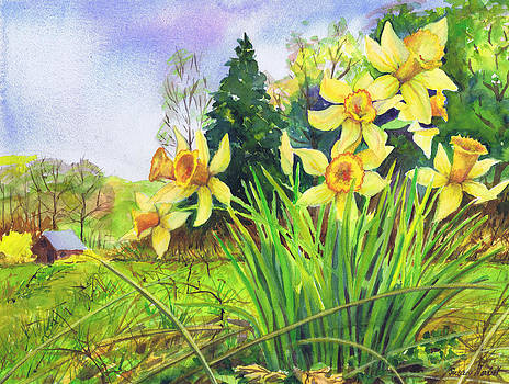 Wild Daffodils by Susan Herbst
