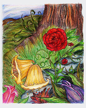 Wild Flowers by Derrick Rathgeber