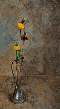 Wild flowers in an antique silver vase with a slate background by Kim M Smith