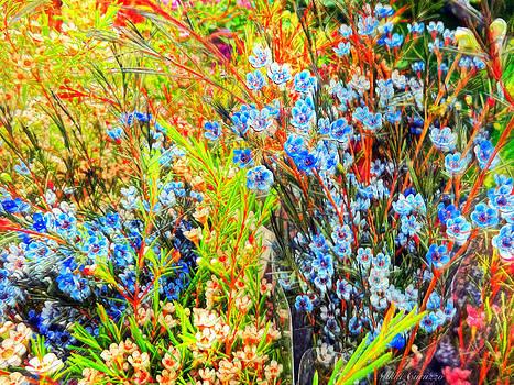 Wild Flowers by Mikki Cucuzzo