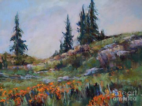 Wild Flowers on the Ridge by Virginia Dauth