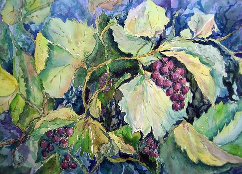 Wild Grapes by Judy Meng