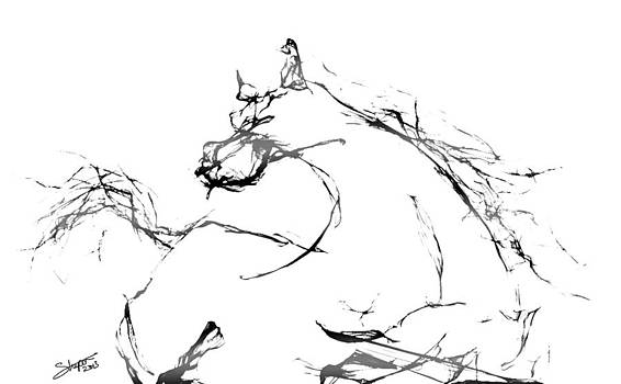 Wild horse by Nagi Shubo
