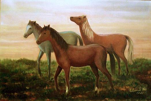 Wild horses at sunset by Laila Awad Jamaleldin