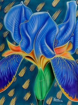 Sam Davis Johnson - Wild Iris