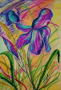 Wild Mountain Iris by Sharon Leigh