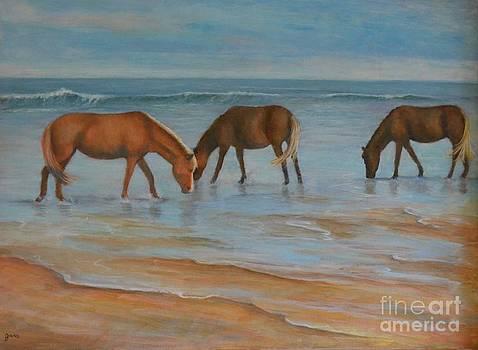 Wild Ponies by Jana Baker