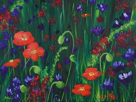 Anastasiya Malakhova - Wild Poppies