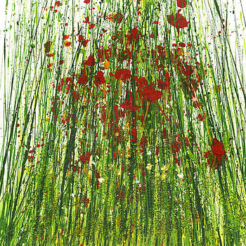 Wild Poppies and Grasses no2 by Mike   Bell