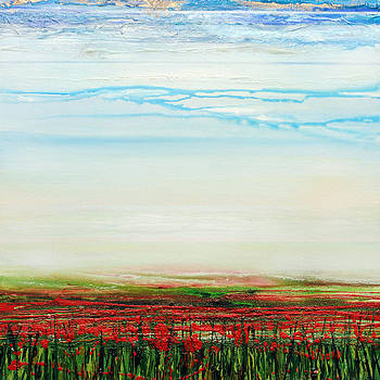 Wild poppies Corbridge  by Mike   Bell