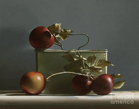 Larry Preston - WILD RED APPLES - study no. 2