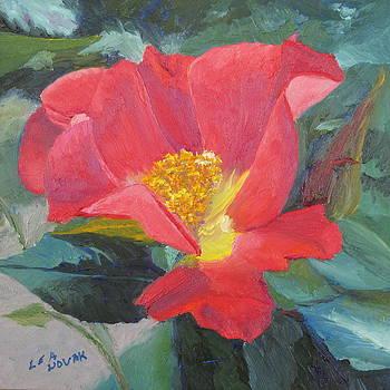 Lea Novak - Wild Rose