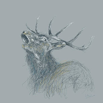 Wild Stag by Viv Griffiths
