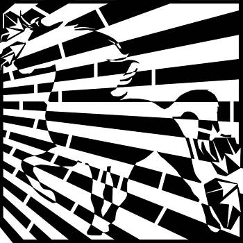 Wild Stallion Maze  by Yonatan Frimer Maze Artist