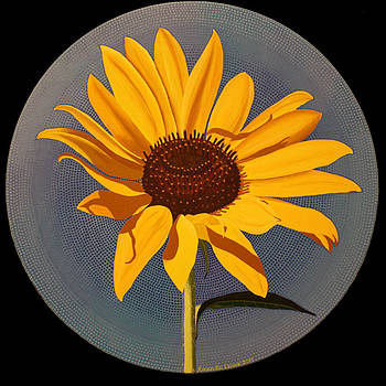 Wild Sunflower by Amanda  Lynne