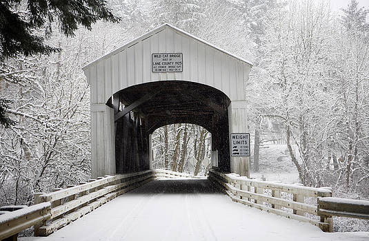 Wildcat Bridge - white on white by Wildcat Photography