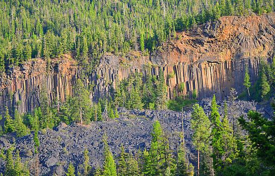 Wildcat Yakima Washington by Emelyn McKitrick