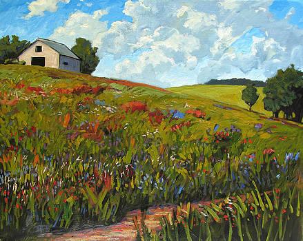 Wildflower Hillside in Boulder County CO by Patty Baker