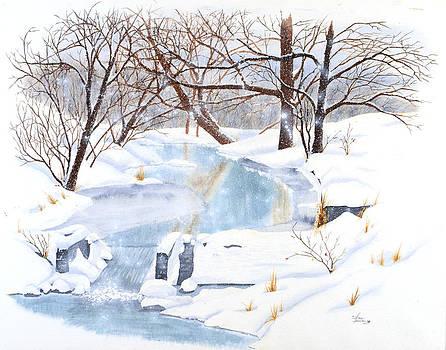 Sam Davis Johnson - Willowood Winter