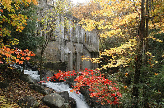 Willsons Ruins in Gatineau Park in Quebec by Rob Huntley